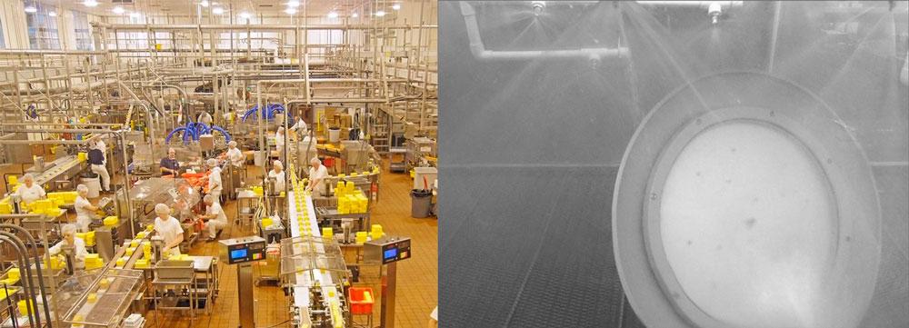 LED Leuchte für Lebensmittelproduktion