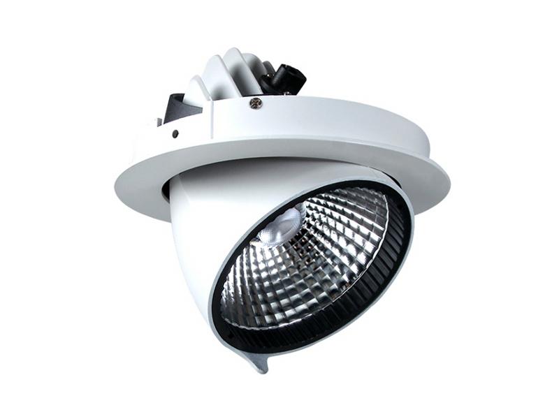 LED Downlight Relo Plus